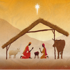 Compassion Charity Christmas Cards - In A Stable (Pack of 10)