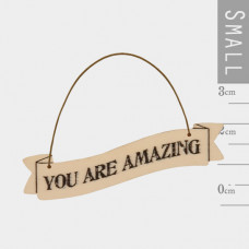 You Are Amazing Tiny Plaque