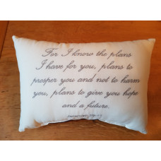Embroidered Cushion - For I Know The Plans