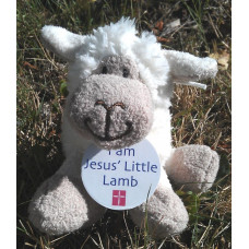 Jesus' Little Lamb Black Or White