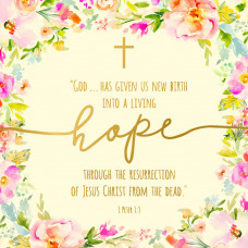 Charity Easter Cards - Living Hope (pack of 5)