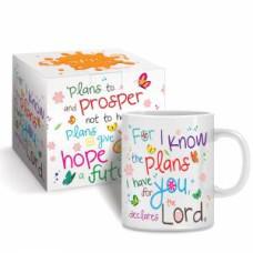 Boxed Mug - I Know the Plans