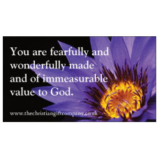 Magnet - Fearfully & Wonderfully Made