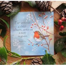 Christmas Card 5 Pack Robin Star