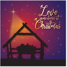Christmas Cards 10 Pack Manger Luxury