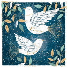 Christmas Cards 10 Pack Two Doves