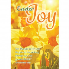 Compassion Charity Easter Cards - Daffodils/Joy (Pack of 8)