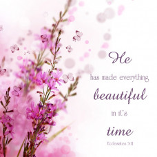 He Has Made Everything Beautiful Printed Plaque