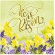 Compassion Easter Cards He Is Risen (5)
