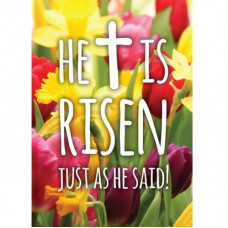 Compassion Charity Easter Cards - Risen/Tulips (Pack of 5)