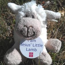Jesus' Little Lamb Black Or White