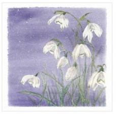 Christmas Cards x 10 Snowdrops