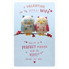 Valentines Owls Greetings Card
